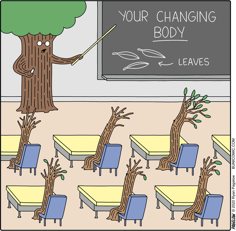 Awkward changing seasons
