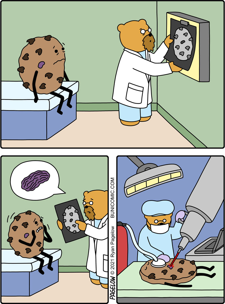 I'm sorry, but one of your chocolate chips has metastasized into a raisin and must be removed.