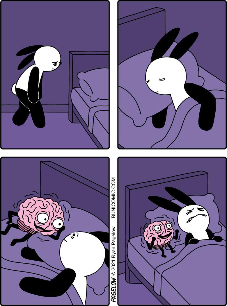 Sleep, Brain, sleep